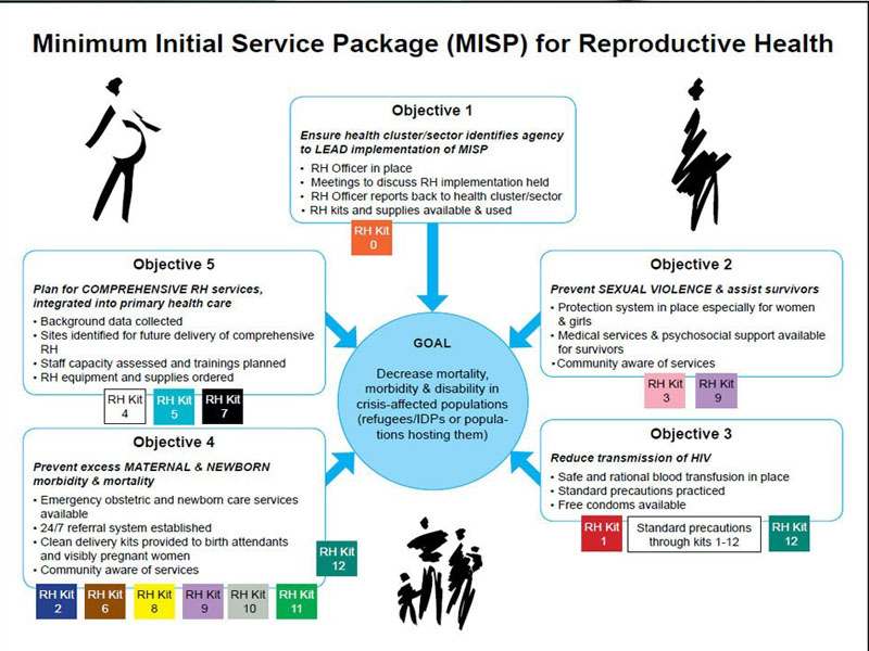 The Minimum Initial Service Package (MISP)