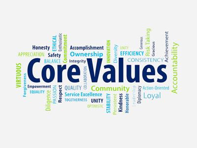 ارزشهای اساسی افگا